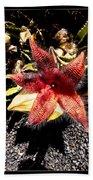 Stapelia Grandiflora Starfish Cactus Bath Towel