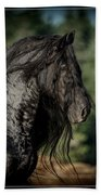 Star Stallion Bath Towel