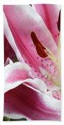 Stargazer Lily Flowers Closeup Bath Towel