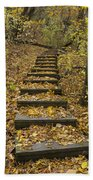 Step Trail In Woods 14 Bath Towel
