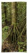 Stilt Roots In The Rainforest Ecuador Bath Towel