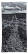 Storm Tracks Bath Towel