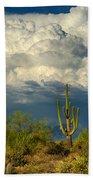 Stormy Desert Skies  Bath Towel
