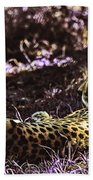 Styled Environment-the Modern Trendy Cheetah Bath Towel