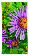 Subalpine Daisy By Vidae Falls In Crater Lake National Park-oregon  Bath Towel
