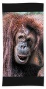 Sumatran Orangutan Bath Towel