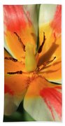 Flower Of Velvet Hand Towel