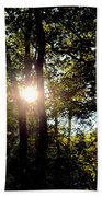 Sun Kissed Trees Bath Towel