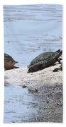 Sun Turtles Bath Towel