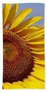 Sun Worshipper Bath Towel