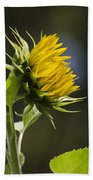 Sunflower Bright Side Bath Towel