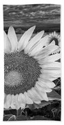 Sunflower Field Forever Bw Bath Towel