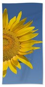 Sunflower, Helianthus Annuus Bath Towel