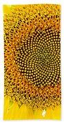 Sunflower In The Summer Sun Bath Towel
