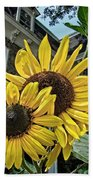 Sunflower Under The Gables Hand Towel