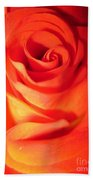 Sunkissed Orange Rose 10 Bath Towel