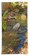 Sunlight On Andreas Creek In Indian Canyons-ca Bath Towel