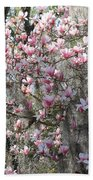 Sunlight On Saucer Magnolias Bath Towel