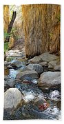 Sunlight Over Rocky Andreas Creek In Indian Canyons-ca Bath Towel