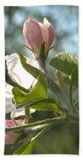 Sunlit Apple Blossoms Bath Towel
