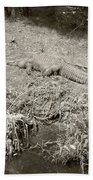 Sunny Gator Sepia  Bath Towel