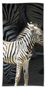 Sunny Zebra Bath Towel
