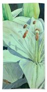Sunset Lily Bath Towel