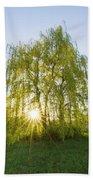 Sunset Willow Bath Towel