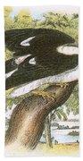 Swallow-tailed Kite Bath Towel