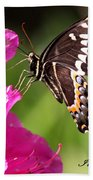 Swallowtail And Azalea - Love Bath Towel