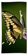Swallowtail And Friends Bath Towel