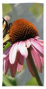 Looking Up At Swallowtail On Coneflower Bath Towel