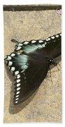 Swallowtail On The Rocks Bath Towel