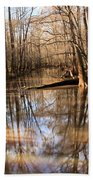 Swamp Reflections Bath Towel