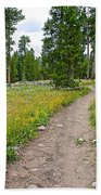 Swan Lake Trail In Grand Teton National Park-wyoming Bath Towel