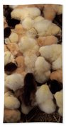 Sweet Baby Chicks For Sale Bath Towel