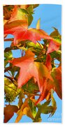 Sweetgum Leaves In Autumn Bath Towel