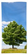 Sycamore  Acer Pseudoplatanus Bath Towel