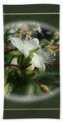 Sympathy Greeting Card - Elegant Floral Green And White Bath Towel