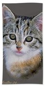Tabby  Kitten An Original Painting For Sale Bath Towel