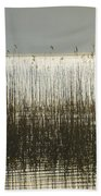 Tall Grass On Lough Eske - Donegal Ireland Hand Towel