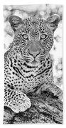 Tarangire Leopard Bath Towel
