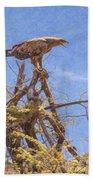 Tawny Eagle  Aquila Rapax Calling From  Acacia Bush Bath Towel
