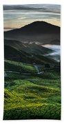Tea Plantation At Dawn Hand Towel