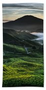 Tea Plantation At Dawn Bath Towel