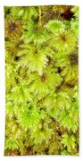 Tender Fresh Green Moss Background Texture Pattern Bath Towel