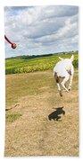 Terrier Levitation Bath Towel