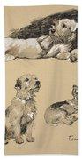 Terriers, 1930, Illustrations Bath Towel