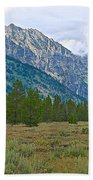 Tetons Above The Meadow In Grand Teton National Park-wyoming Bath Towel