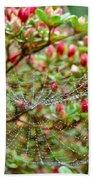 Tetragnathidae Web In Azalea - Cape Cod Ma Bath Towel